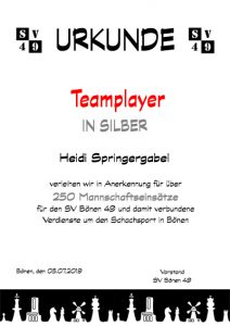 Teamplayer-Silber